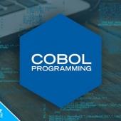 New Deal: 96% off the Enterprise COBOL Programming Bundle Image
